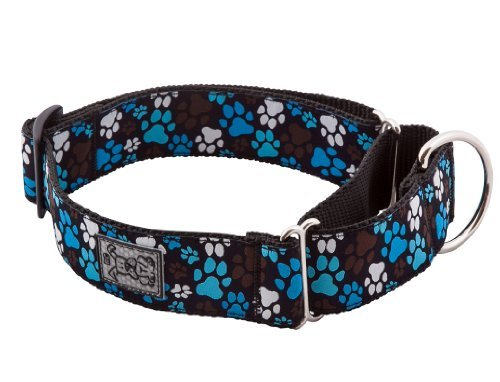 Rc Pet Trn Clr All Web S Choco Rc Pet Products 1 1 2 Inch All Webbing Martingale Dog Collar Small Pitter Patter Chocolate