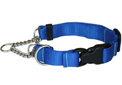 Canine Equipment Technika 1 Inch Quick Release Martingale Dog Collar Medium Blue Quick Release Martingale Tec M Blue