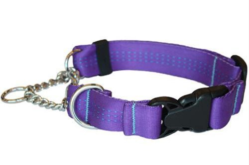 Canine Equipment Technika 1 Inch Quick Release Martingale Dog Collar Medium Purple Quick Release Martingale Tec M Purple