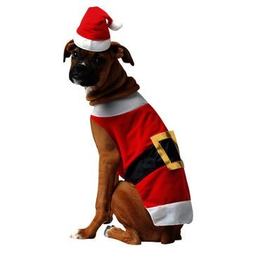 Rasta Imposta Santa Costume Xl Pet Costume Santa (as Shown;x Large)