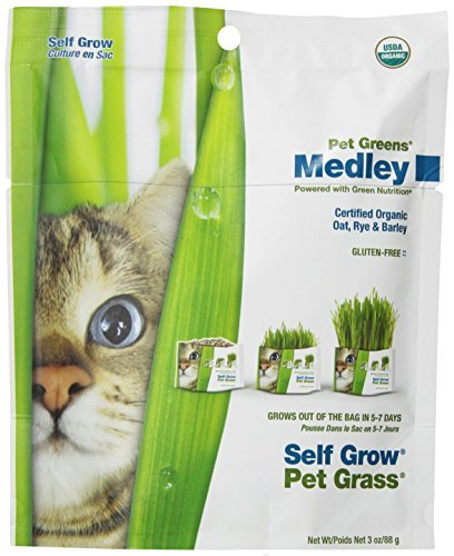 Pet Greens Medley Self Gro Kit Bellrock Growers Pet Greens Medley Pet Treat