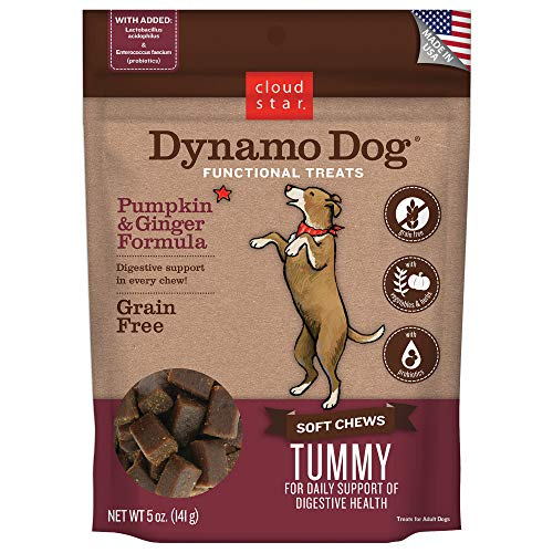Cloud Dynamo Tummy Pumpkin 5oz Cloud Star Dynamo Dog Tummy Functional Treat Pouches Pumpkin And Ginger 5 Ounce