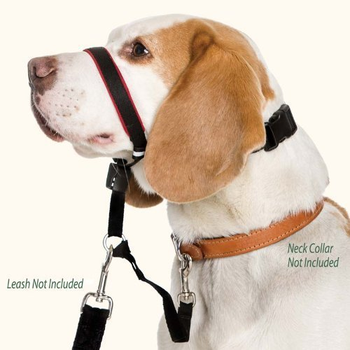 Coa D Halti Optifit Small Halti Optifit Headcollar (small)