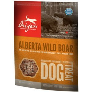 Orijen D Fzd Treats Boar 3.5oz Orijen Alberta Wild Boar Singles Freeze Dried Dog Treats 3.5 Oz Bag (80 Treats)