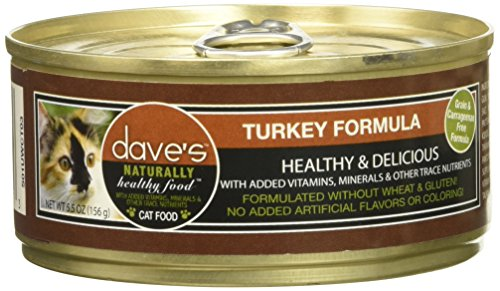 Dave's Naturally Healthy Turkey 5.5oz