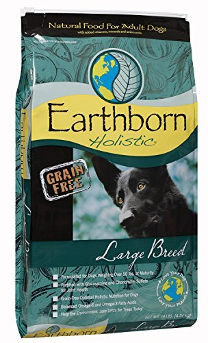 Earthborn Holistic Natural Large Breed 14lb