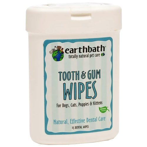Earthbath Wipes Tooth Gum 25ct Earthbath 026362 25 Count Tooth And Gum Wipes For Dogs Cats Puppies And Kittens