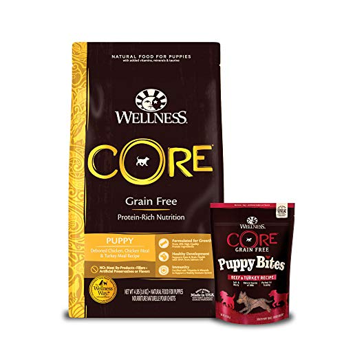 Wellness Core Puppy 4lb Qb 6