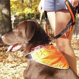 Kurgo Reflective Bandana Lg Kurgo Reflect And Protect Active Dog Bandana Large