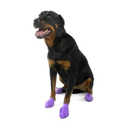 "Pawz Dog Boots Lg Purple 12ct A Single Water Proof Dog Boots 12 Pack Size Large (up To 4"") Color Purple"