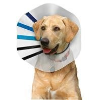 Kong Elizabethan Collar Md Kong Ez Clear Collar For Dogs Clear