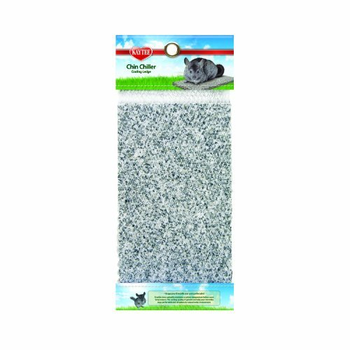 Spet Chin Chiller Kaytee Chinchilla Chiller Granite Stone