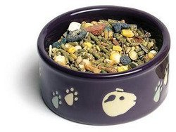 Zzspet Dish Pawprint Gpig 4.25 Small Animal Supplies Petware Dish Guinea Pig