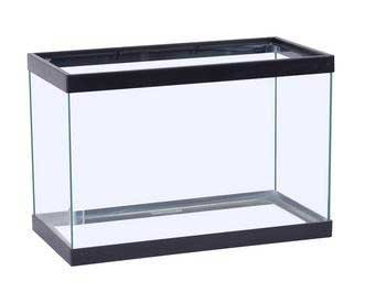 Perfecto Economy Tank 10gl Blk Perfecto Manufacturing Apf10100 10 Gallon Aquarium Tank 20 By 10 By 12 Inch Black