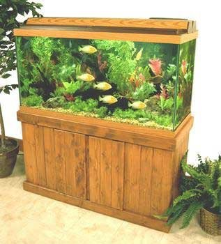 Perfecto Stand Oak 48x18 Perfecto Manufacturing Apf68482 Majesty Stand For Aquarium 48 By 18 Inch Oak
