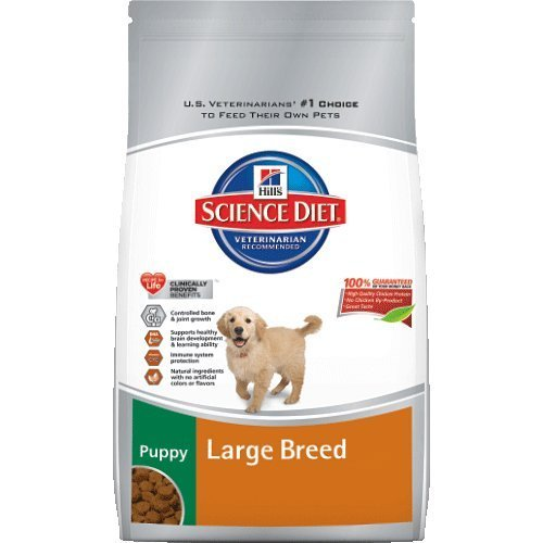 Hill's Science Diet Puppy Large Breed 30lb