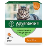 Advantage Cats 4pk Under 9lb Bayer Advantage Ii Small Cat 5 To 9 Pound 4 Month