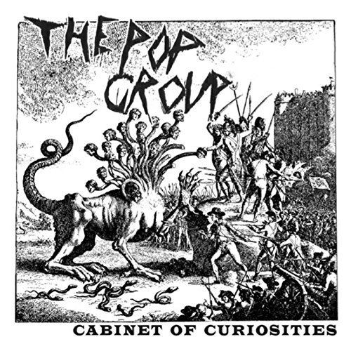 Pop Group Cabinet Of Curiosities