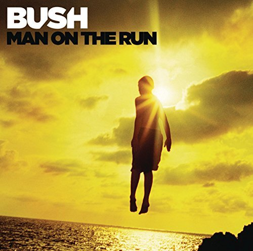 Bush Man On The Run