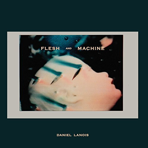 Daniel Lanois Flesh & Machine