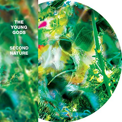 Young Gods Second Nature