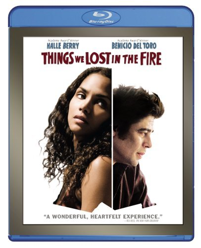 Things We Lost In The Fire Berry Del Toro Duchovny Ws Blu Ray R