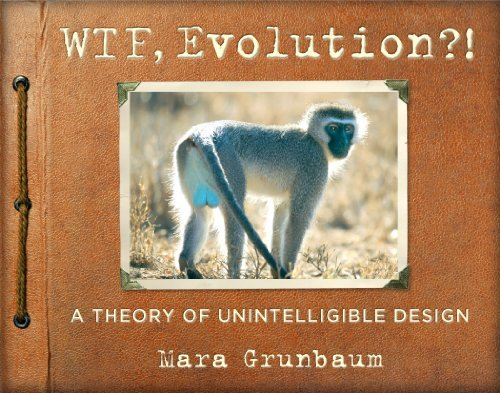Mara Grunbaum Wtf Evolution?! A Theory Of Unintelligible Design