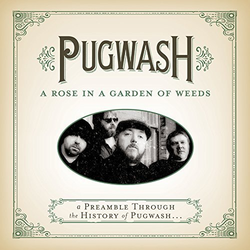 Pugwash A Rose In A Garden Of Weeds