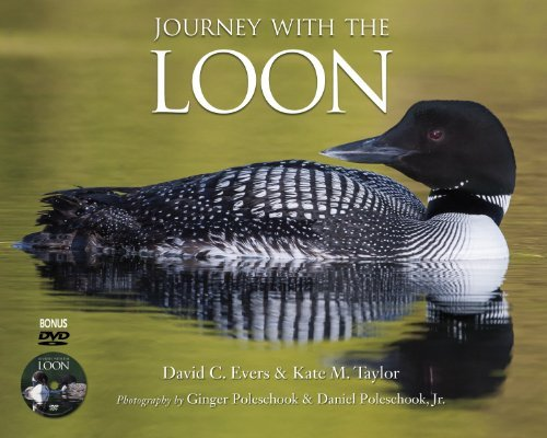 David C. Evers Journey With The Loon [with Dvd]