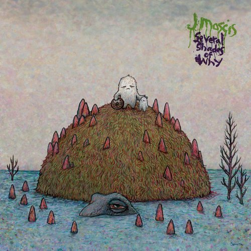 J Mascis Several Shades Of Why
