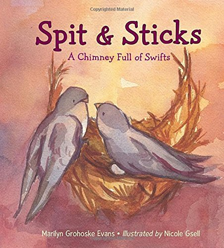Marilyn Grohoske Evans Spit & Sticks A Chimney Full Of Swifts