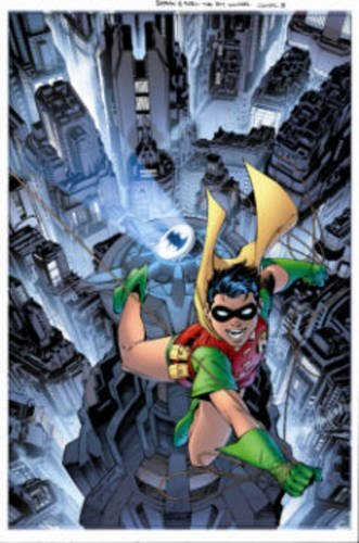 Bill Finger Robin The Boy Wonder A Celebration Of 75 Years