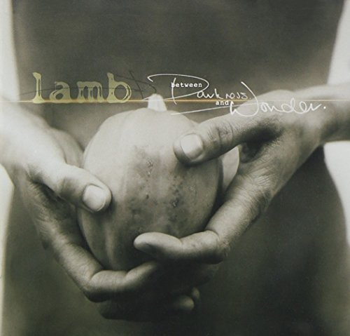 Lamb Between Darkness & Wonder