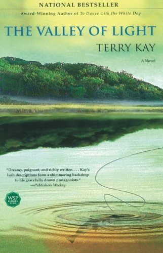 Terry Kay The Valley Of Light