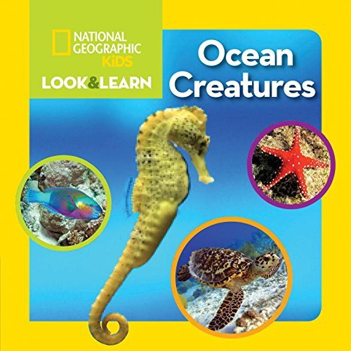 National Geographic Kids National Geographic Kids Look And Learn Ocean Creatures