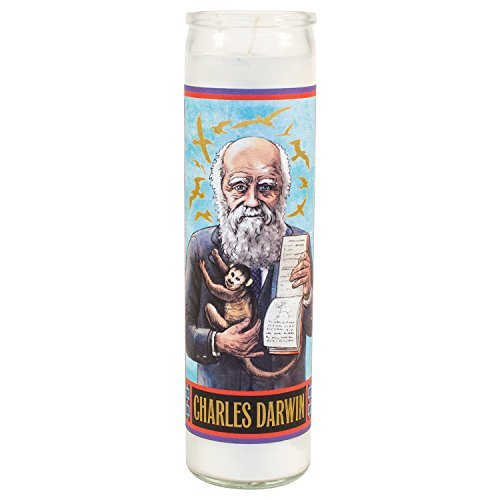 Boutique Charles Darwin Secular Saint Candle