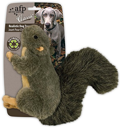 Afp Classic Squirrel Sm