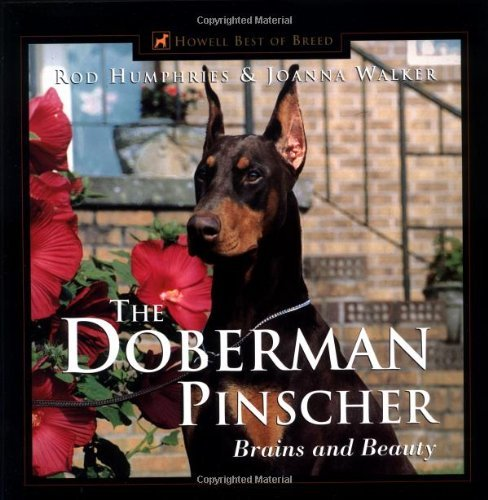 Joanna Walker The Doberman Pinscher Brains And Beauty