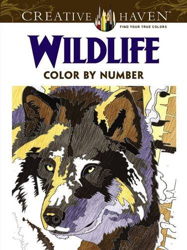 Diego Jourdan Pereira Creative Haven Wildlife Color By Number Coloring B