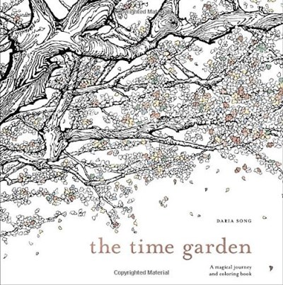 Daria Song The Time Garden A Magical Journey And Coloring Book