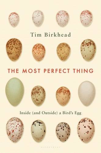 Tim Birkhead The Most Perfect Thing Inside (and Outside) A Bird's Egg