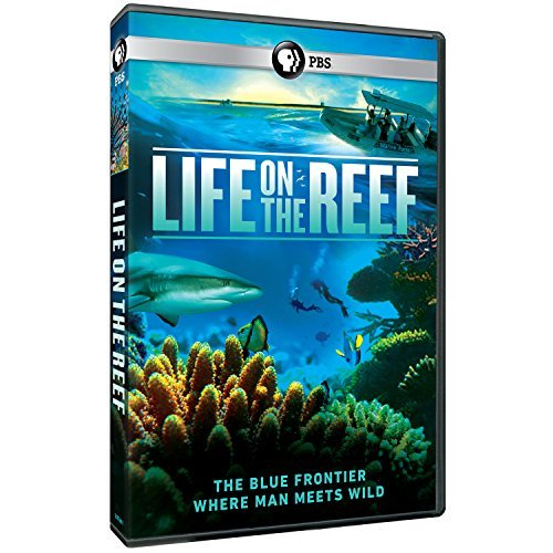 Life On The Reef Pbs DVD Nr