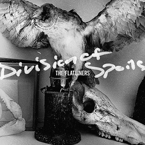 Flatliners Division Of Spoils