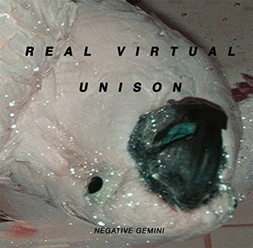 Negative Gemini Real Virtual Unison