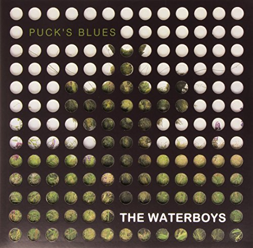The Waterboys Puck's Blues Puck's Blues