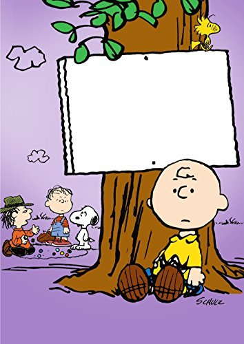 Peanuts He's A Bully Charlie Brown DVD Nr