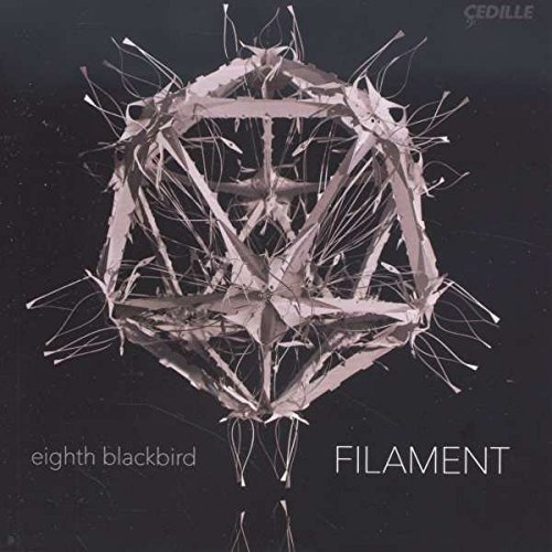 Dessner Eighth Blackbird D Filament
