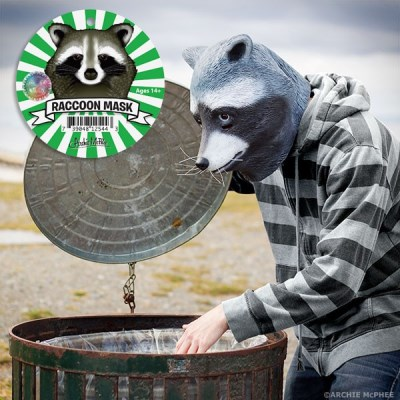 Novelty Racoon Mask 3 Case
