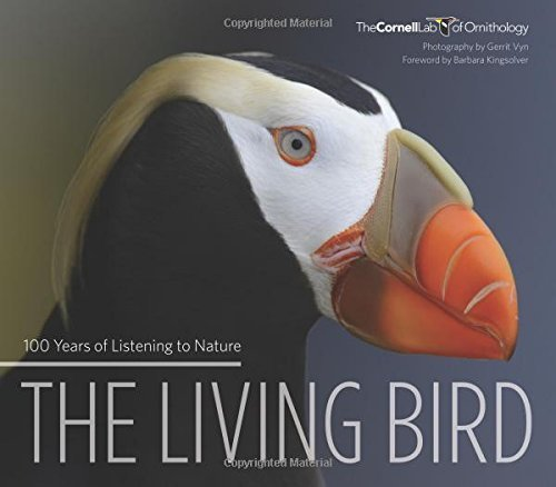 Gerrit Vyn Living Bird 100 Years Of Listening To Nature