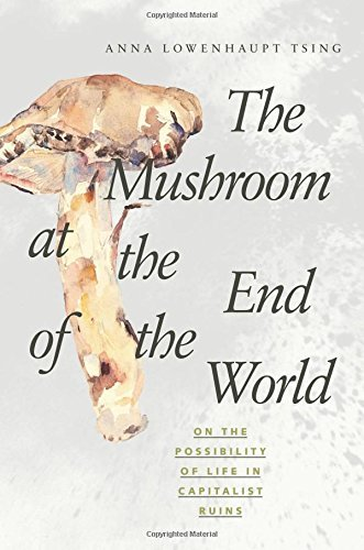 Anna Lowenhaupt Tsing The Mushroom At The End Of The World On The Possibility Of Life In Capitalist Ruins